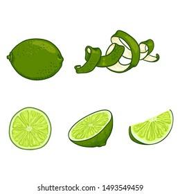 Vector Set of Cartoon Lime Fruits. Whole, Peeled and Sliced
