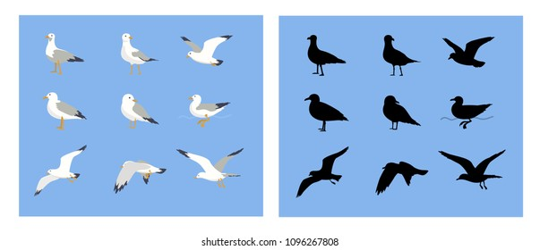 Vector set of cartoon seagulls and  sea gull silhouette. Cartoon atlantic seabird in a flat style. Seagulls flying in the blue sky.