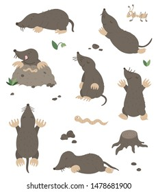 Vector set of cartoon style flat funny moles in different poses with ant, worm, leaves, stones clip art. Cute illustration of woodland animals for children's design.