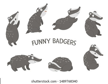 Vector set of cartoon style hand drawn flat funny badgers in different poses. Cute illustration of woodland animals for children's design
