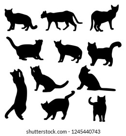 Vector set of cats silhouettes playing and sitting isolated on white background