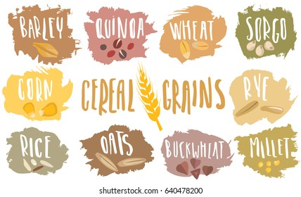 Vector set of cereal emblems with white handwritten lettering and hand-drawn stylized grains. For packing groats, advertising healthy food.