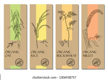 Vector set of cereal labels with grains and plants sketches: oat, rice, buckwheat and millet. Healthy food, bio, organic, natural product