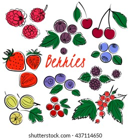 Vector set of  color berries(gooseberries, raspberries, strawberries, black currants, red currants, cranberries, blueberries, cherries) Sketch illustration.