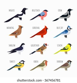 Vector set of Colorful bird icons. Cardinal, magpie, sparrow and swallow