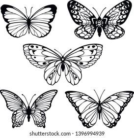 vector set of contour stylized beautiful butterflies