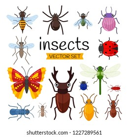 Vector set of cute cartoon insects.