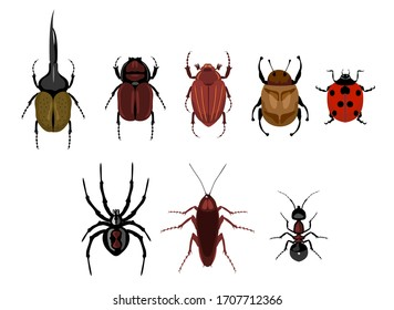 Vector set of cute cartoon insects. Crawling insects set - ant, spider, beetle, cockroach, ladybug.  Different beetles on an isolated background.