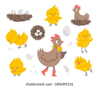 Vector set with cute hen, little chicks, eggs, nest. Spring or Easter funny illustration isolated on white background for kids. Farm bird icons pack