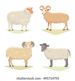 Vector set Cute Sheep and Ram isolated retro illustration. Standing mutton silhouette on white. Farm fanny milk young animals. Set Cartoon milk animal vector