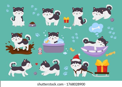 Vector set of cute Siberian husky dogs. Kawaii cartoon character puppy is jump in muddy puddle, washing, playing ball, sleeping on pillow. Christmas dog with sleigh and gift. Illustration for kids.