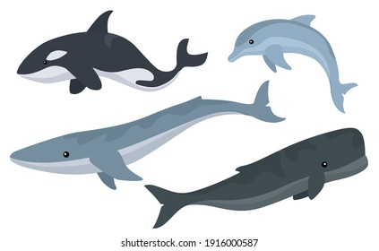 Vector set of cute whales illustrations.
