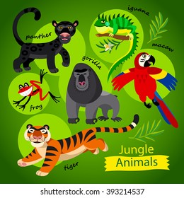 Vector set - cute wild animals of Jungle. Childish illustration in cartoon style. Part 1: Panther, gorilla, tiger, iguana, frog, parrot