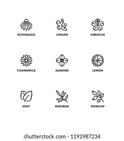 Vector set of design elements, logo design template, icons and badges for the flavor of organic tea. Line icon set, editable stroke.