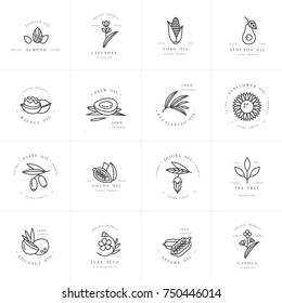 Vector set design templates and emblems - healthy and cosmetics oils. Different natural, organic oils. Logos in trendy linear style