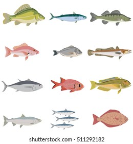 Vector set of difference kind of fish, river and sea food.