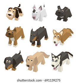 Vector set of different breed isometric dogs. Isolated cute isometry animals. Elements of geometric flat dogs for 3d game. Icon collection of domestic and home animals.Beagle, Bulldog, Boxer, Doberman