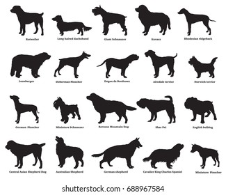Vector set of different breeds dogs silhouettes isolated in black color on white backround