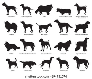 Vector set of different breeds dogs silhouettes isolated in black color on white backround. Part 2