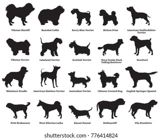 Vector set of different breeds dogs silhouettes isolated in black color on white background. Part 5