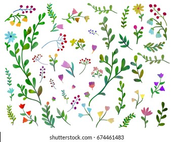 Vector set with different floral elements on white background. Watercolour imitation.