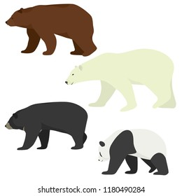 Vector set of different species of bears. Brown bear, polar bear, american black bear and giant panda. Colorful bears collection.
