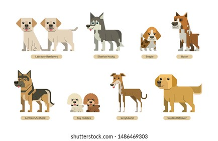 vector set of dogs with flat style