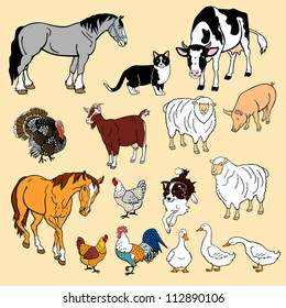 vector set of domestic animals,isolated pictures