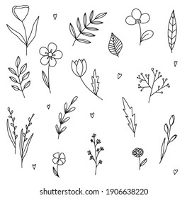 Vector set of doodle hand-drawn flowers. Collection of modern line illustrations.