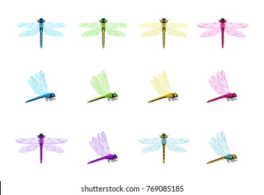 Vector set of dragonflies in various colors. Cartoon dragonflies in bright colors for children.