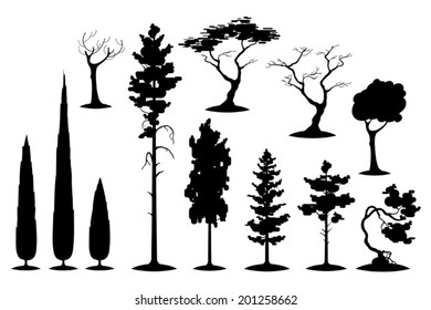 Vector set of evergreens and various trees silhouettes