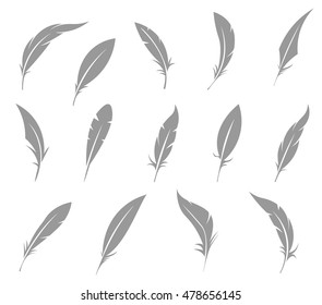 Vector set of feather isolated on white background.