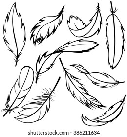 Vector set of feathers on white background