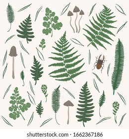 Vector set with fern leaf, mushrooms, pine needles and stag-beetles on light background.