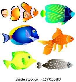 Vector set of fish, colorful aquarium fish.