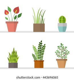 Vector set with flat flowers in pots