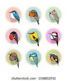 Vector set of flat icon - birds. Bird icon vector illustration, cartoon bird. Bullfinch, oriole, blue tit, woodpecker, finch, redstart, nuthatch, jay, skylark.