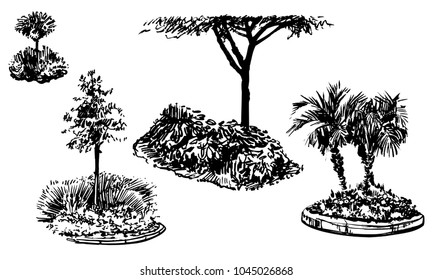 Vector set of flower beds and trees silhouettes. Black and white garden compositions. Ink hand drawn palms, maple, linden, bushes, grass, flowers