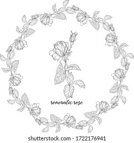 Vector set of flower compositions with rose flowers. Floral wreath. Rose.
