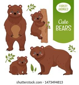 Vector set of forest animals. Cartoon illustration of cute bears.