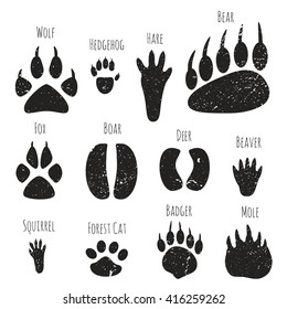 Vector set of forest animals footprints.