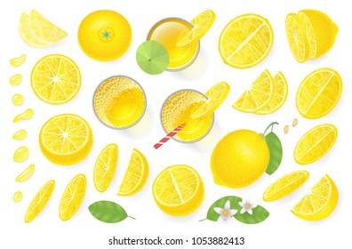 Vector set. Fresh lemon and lemon juice. Top view. Lemon sliced in various pieces, juice in glasses, leaves, flowers, grains, drops. View from above.