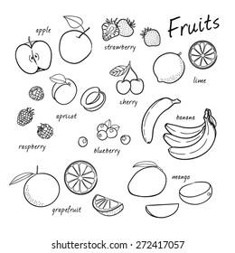 Vector set of fruits. Fruits set. Vector illustration