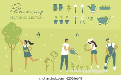 Vector set,  garden, ecology, organic, planting, botanica, green plants, watering a plant, grows trees, harvesting. Cartoon illustration. Cute. Character. Creative people collection