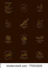 Vector set of golden packaging design templates and emblems. Argan, aloe, peanut, almond, eucalyptus, tea, chamomile and pistachio . Logos in trendy linear style