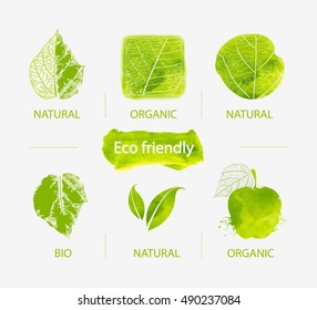 Vector Set of green labels and badges with leaves for organic, natural, bio and eco friendly products.Hand drawn watercolor eco labels with skeleton of leaves/