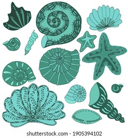 vector set of green seashells on white background