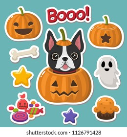 Vector set of Halloween icons stickers. In the picture the dog  French bulldog in a pumpkin, a pumpkin with a smile, a pumpkin with evil face, candy, bones, ghost, stars, pumpkin pie
