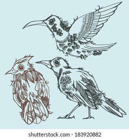 vector set of hand drawn birds