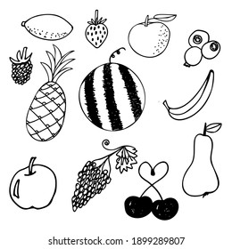 Vector set with hand drawn doodles of fruits and berries: watermelon, pineapple, orange, lemon, apple, banana, pear, cherry, raspberry, grape, strawberry, blueberry. Illustrations for homemade jams.